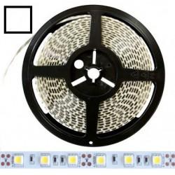 Taśma 3528 LED 300 IP20 zimna zimna 5mb 12V DC