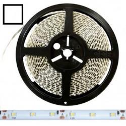Taśma 3528 LED 300 IP65 biała zimna 5mb 12V DC